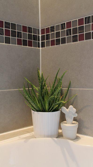 plante-aloe-vera-ikea-baignoire
